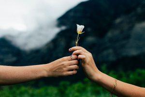 世界に一つだけの花,歌詞,意味